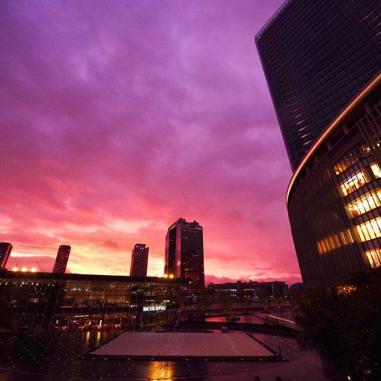 フォトギャラリー。<br>「マイナビジャパンツアーファイナル グランフロント大阪大会」。